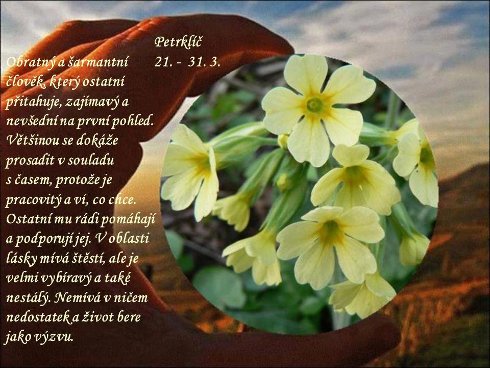 Fialka 11. – 20. 3. Nenápadná, ale pěkná květina, tak i lidé v tomto znamení působí na druhé – tichým a klidným dojmem. Nikam se nederou, i když touží