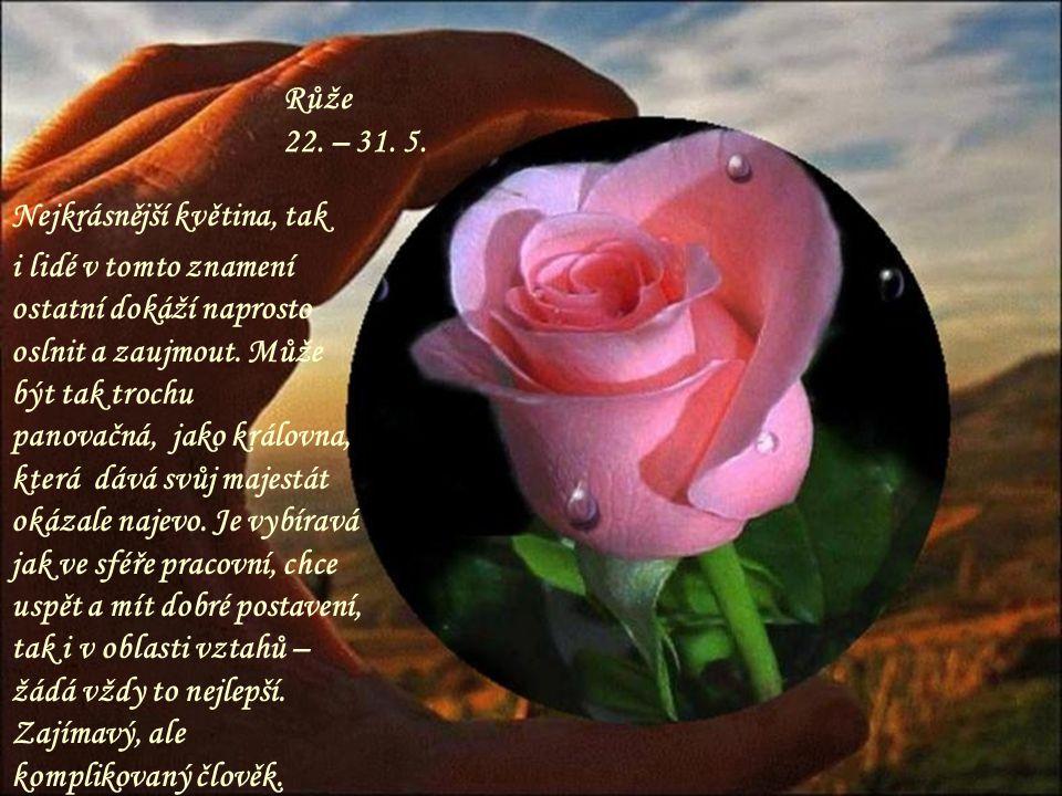 Konvalinka 11. – 21. 5. Roztomilá květinka, kterou má každý rád. I tento člověk se dokáže vloudit do přízně, protože je velmi cílevědomý, může na druh