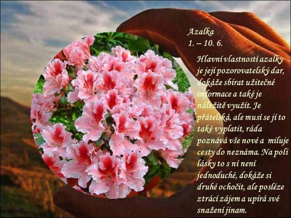 Růže 22. – 31. 5. Nejkrásnější květina, tak i lidé v tomto znamení ostatní dokáží naprosto oslnit a zaujmout. Může být tak trochu panovačná, jako král