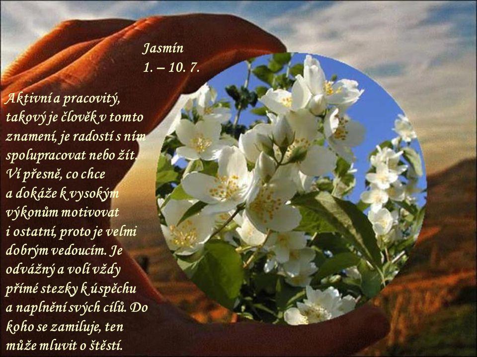 Maceška 21. – 30. 6. Kouzelná a roztomilá květinka, nikam se zbytečně nedere ale zná svojí cenu. Ten, kdo se narodil v tomto znamení dokáže říci vše n