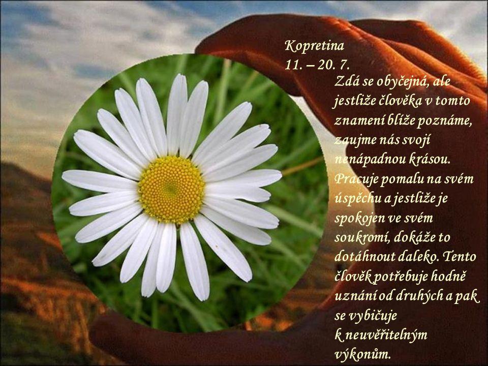Jasmín 1. – 10. 7. Aktivní a pracovitý, takový je člověk v tomto znamení, je radostí s ním spolupracovat nebo žít. Ví přesně, co chce a dokáže k vysok