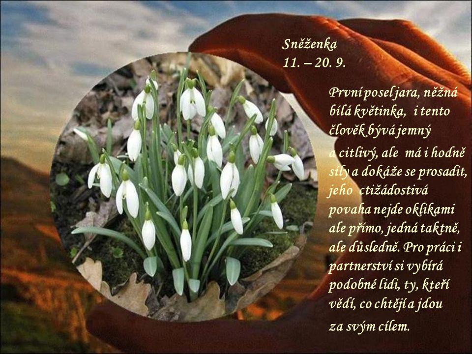 Leknín 1. – 10. 9. Nevšední květina, takový je i člověk v tomto znamení, bývá duchovně vyspělý a zajímají ho často nadpřirozené jevy, má rád tajemství