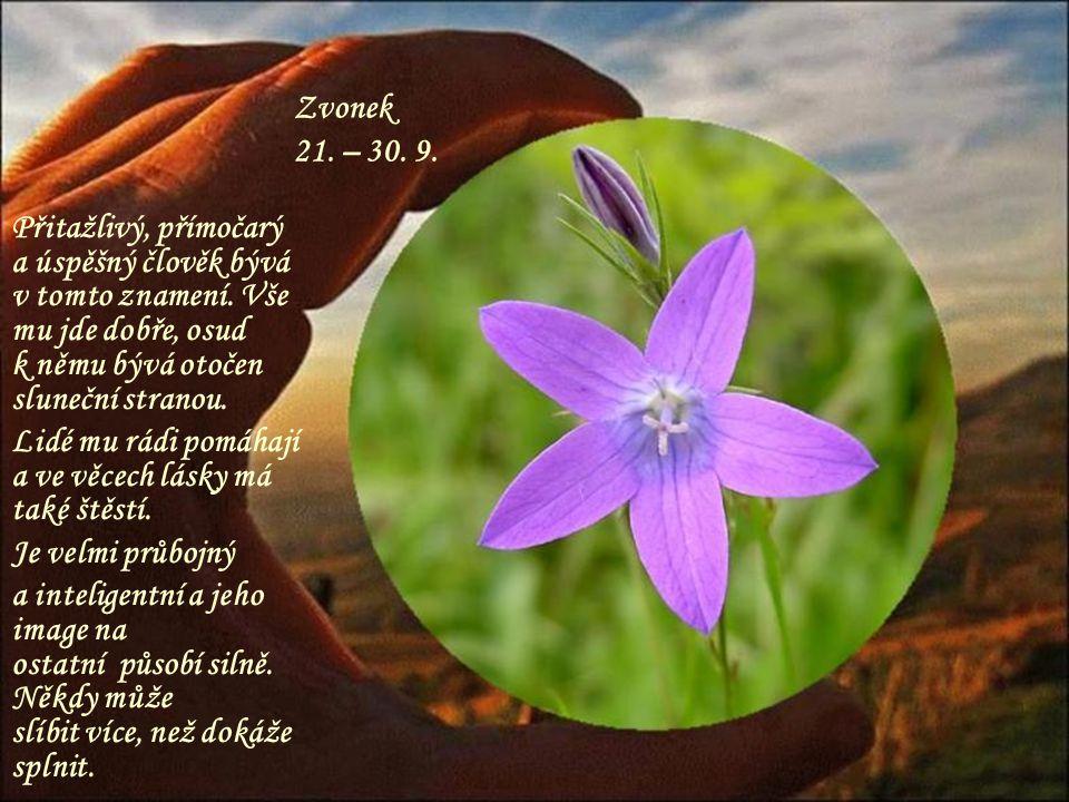 Sněženka 11. – 20. 9. První posel jara, něžná bílá květinka, i tento člověk bývá jemný a citlivý, ale má i hodně síly a dokáže se prosadit, jeho ctižá