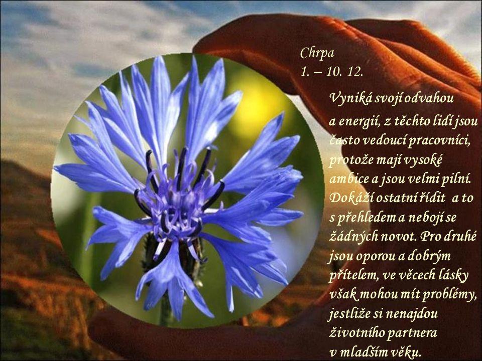 Orchidej 21. – 30. 11. Překrásná, exotická květina, která zaujme na první pohled, takový je i člověk narozený v tomto znamení – originální a nevšední.