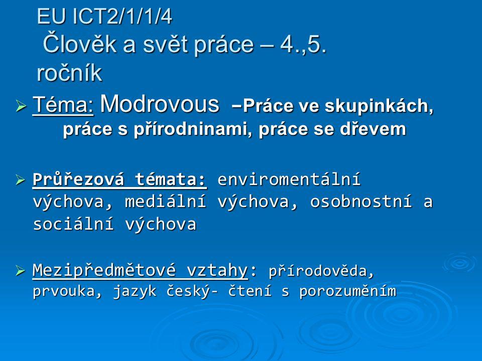 EU ICT2/1/1/4 Člověk a svět práce – 4.,5. ročník  Téma: Modrovous – Práce ve skupinkách, práce s přírodninami, práce se dřevem  Průřezová témata: en