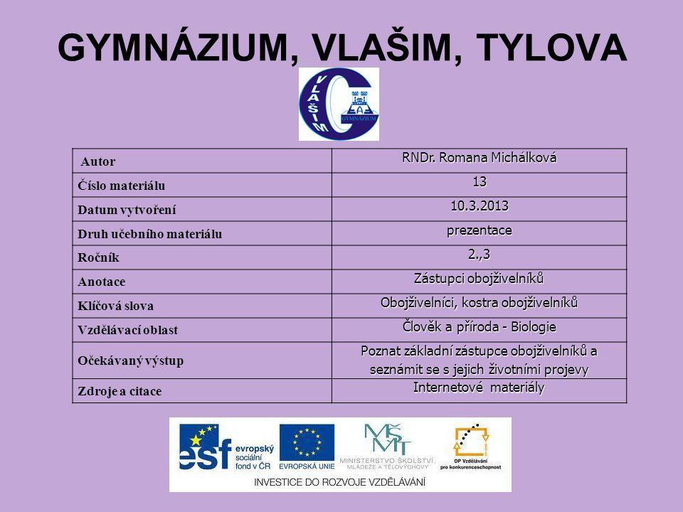 GYMNÁZIUM, VLAŠIM, TYLOVA Autor RNDr.