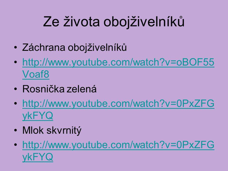 Ze života obojživelníků Záchrana obojživelníků http://www.youtube.com/watch v=oBOF55 Voaf8http://www.youtube.com/watch v=oBOF55 Voaf8 Rosnička zelená http://www.youtube.com/watch v=0PxZFG ykFYQhttp://www.youtube.com/watch v=0PxZFG ykFYQ Mlok skvrnitý http://www.youtube.com/watch v=0PxZFG ykFYQhttp://www.youtube.com/watch v=0PxZFG ykFYQ