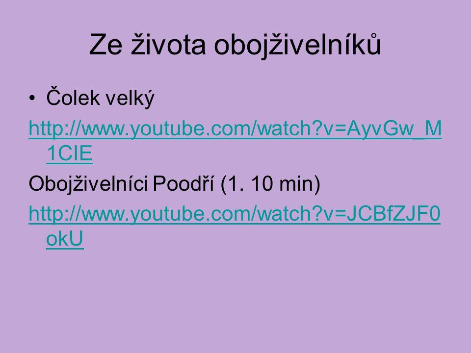 Ze života obojživelníků Čolek velký http://www.youtube.com/watch?v=AyvGw_M 1CIE Obojživelníci Poodří (1. 10 min) http://www.youtube.com/watch?v=JCBfZJ