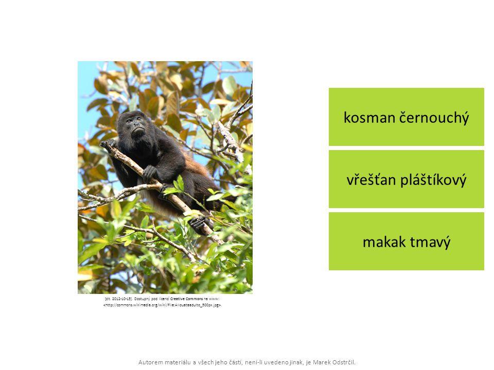 Autorem materiálu a všech jeho částí, není-li uvedeno jinak, je Marek Odstrčil. kosman černouchý makak tmavý vřešťan pláštíkový [cit. 2012-10-15]. Dos