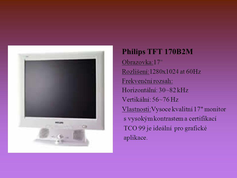 Philips TFT 170B2M Obrazovka:17