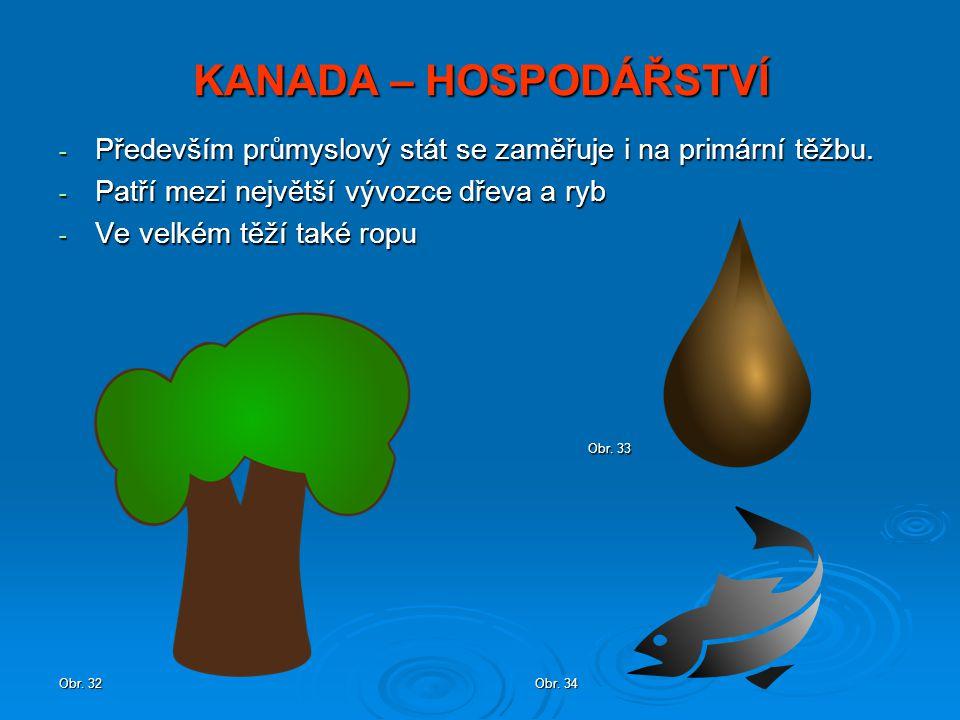 KANADA – HOSPODÁŘSTVÍ - Především průmyslový stát se zaměřuje i na primární těžbu. - Patří mezi největší vývozce dřeva a ryb - Ve velkém těží také rop