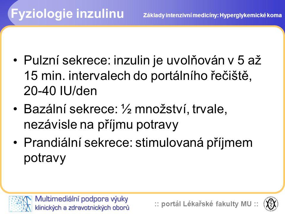 :: portál Lékařské fakulty MU :: Fyziologie inzulinu Pulzní sekrece: inzulin je uvolňován v 5 až 15 min. intervalech do portálního řečiště, 20-40 IU/d