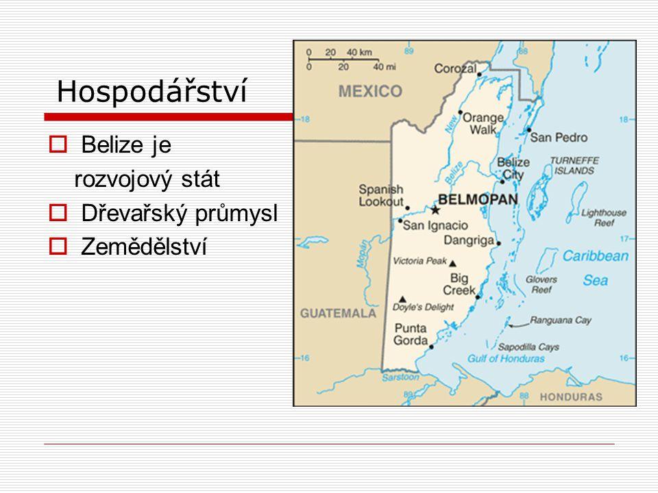 Hospodářství  Belize je rozvojový stát  Dřevařský průmysl  Zemědělství