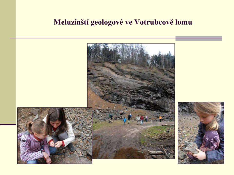 Meluzínští geologové ve Votrubcově lomu