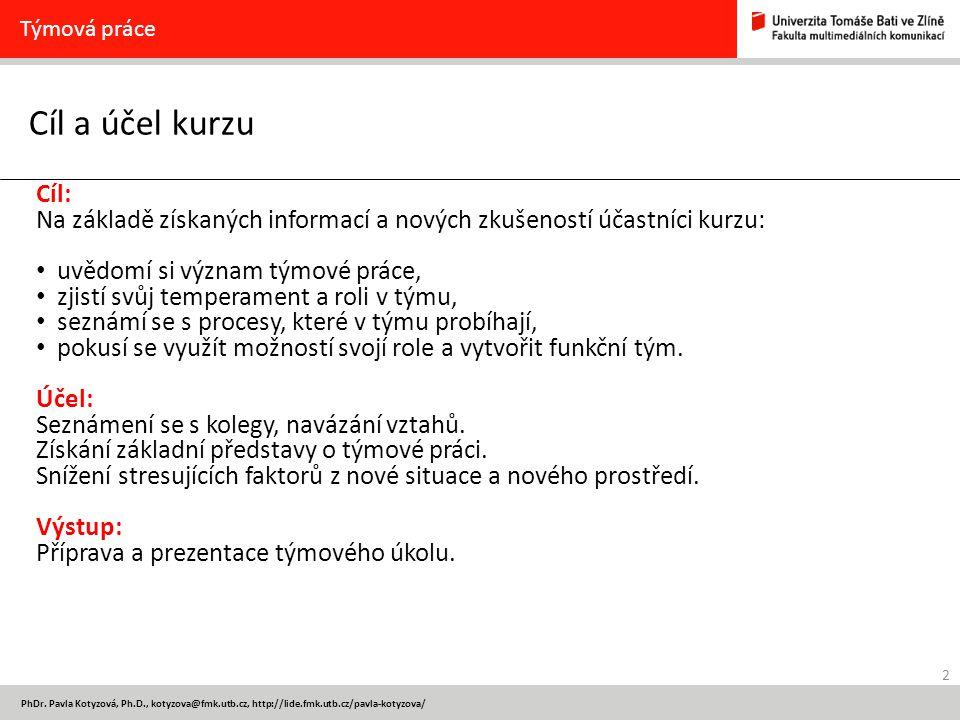 2 PhDr. Pavla Kotyzová, Ph.D., kotyzova@fmk.utb.cz, http://lide.fmk.utb.cz/pavla-kotyzova/ Cíl a účel kurzu Týmová práce Cíl: Na základě získaných inf