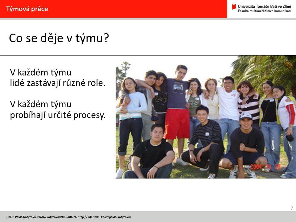 7 PhDr. Pavla Kotyzová, Ph.D., kotyzova@fmk.utb.cz, http://lide.fmk.utb.cz/pavla-kotyzova/ Co se děje v týmu? Týmová práce V každém týmu lidé zastávaj