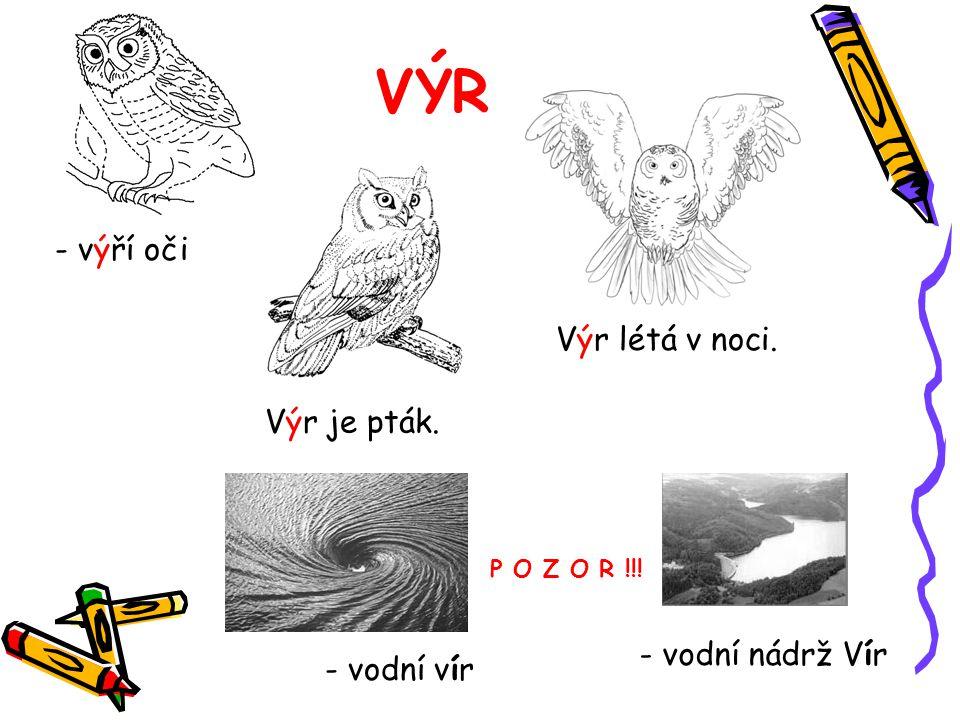 VÝR - výří oči Výr je pták. Výr létá v noci. - vodní vír - vodní nádrž Vír P O Z O R !!!