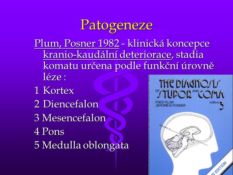 31 Patogeneze Plum, Posner 1982 - klinická koncepce kranio-kaudální deteriorace, stadia komatu určena podle funkční úrovně léze : 1Kortex 2Diencefalon 3 Mesencefalon 4 Pons 5 Medulla oblongata