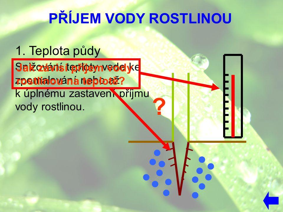 PŘÍJEM VODY ROSTLINOU Snižování teploty vede ke zpomalování nebo až k úplnému zastavení příjmu vody rostlinou. 1. Teplota půdy Jak závisí příjem vody