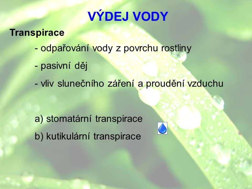 Transpirace - odpařování vody z povrchu rostliny - pasivní děj - vliv slunečního záření a proudění vzduchu a) stomatární transpirace b) kutikulární tr