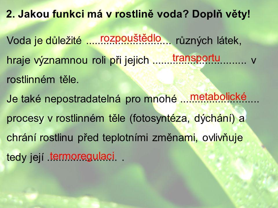 2. Jakou funkci má v rostlině voda? Doplň věty! Voda je důležité............................. různých látek, hraje významnou roli při jejich..........