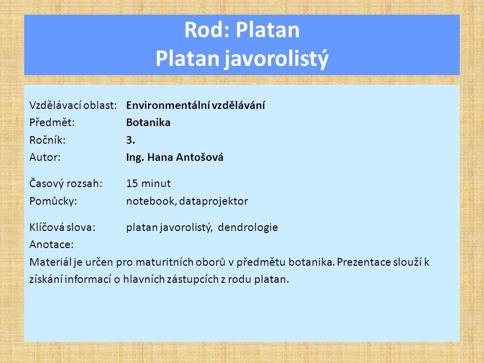 Rod: Platan Platan javorolistý Vzdělávací oblast:Environmentální vzdělávání Předmět:Botanika Ročník:3.