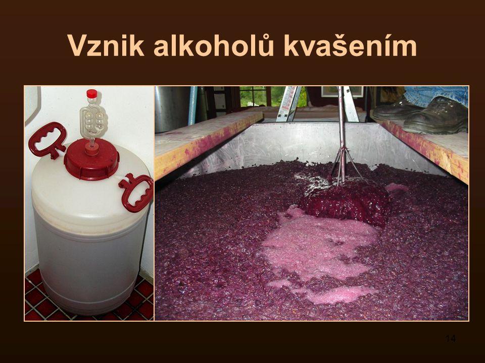 14 Vznik alkoholů kvašením