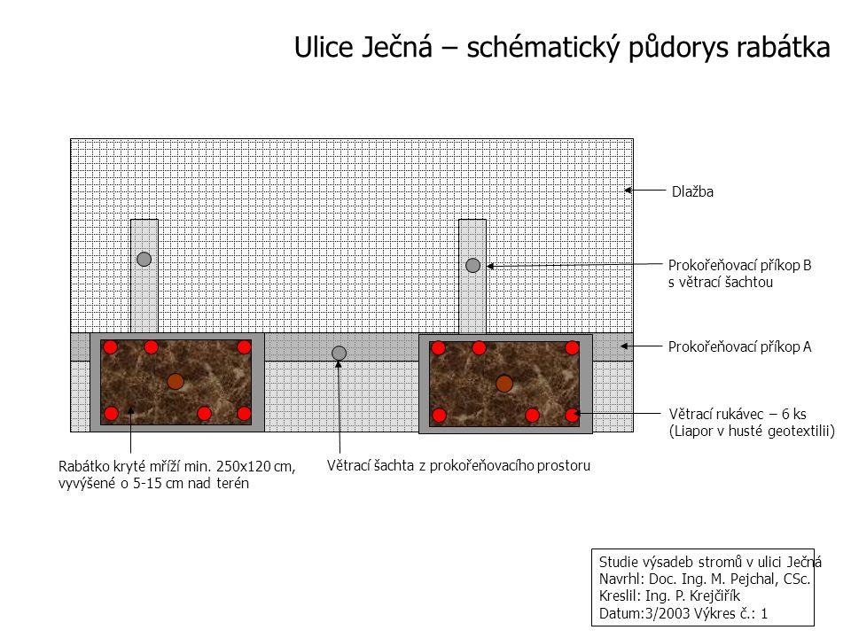 Větrací šachta z prokořeňovacího prostoru Dlažba Prokořeňovací příkop A Rabátko kryté mříží min. 250x120 cm, vyvýšené o 5-15 cm nad terén Ulice Ječná