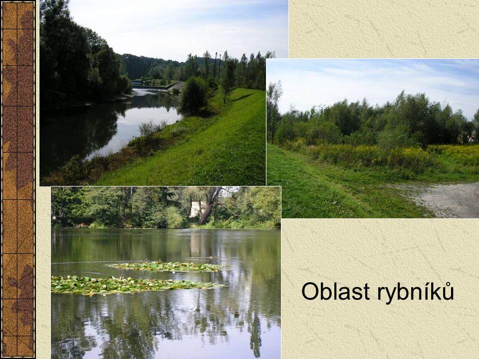 Oblast rybníků
