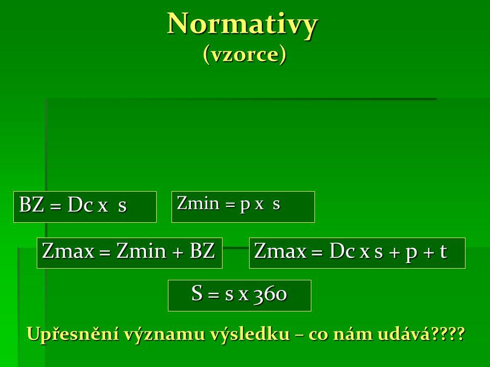 Normativy (vzorce) Zmin = p x s Zmax = Zmin + BZ BZ = Dc x s Upřesnění významu výsledku – co nám udává .