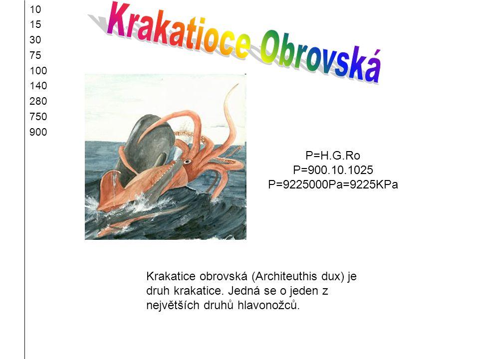 10 15 30 75 100 140 280 750 900 Krakatice obrovská (Architeuthis dux) je druh krakatice. Jedná se o jeden z největších druhů hlavonožců. P=H.G.Ro P=90