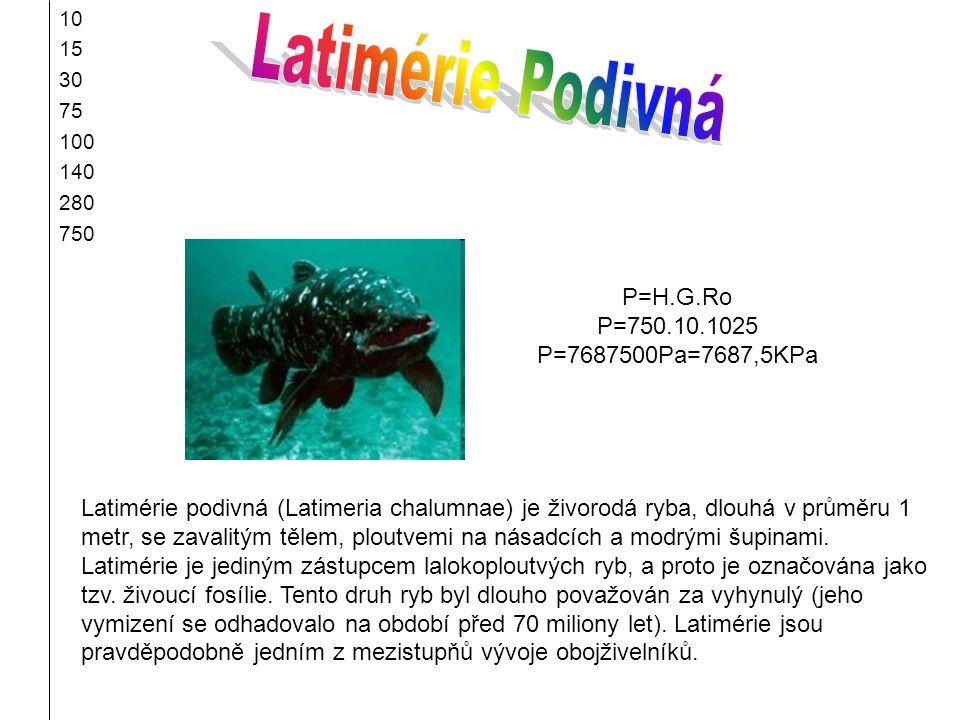 10 15 30 75 100 140 280 750 Latimérie podivná (Latimeria chalumnae) je živorodá ryba, dlouhá v průměru 1 metr, se zavalitým tělem, ploutvemi na násadc