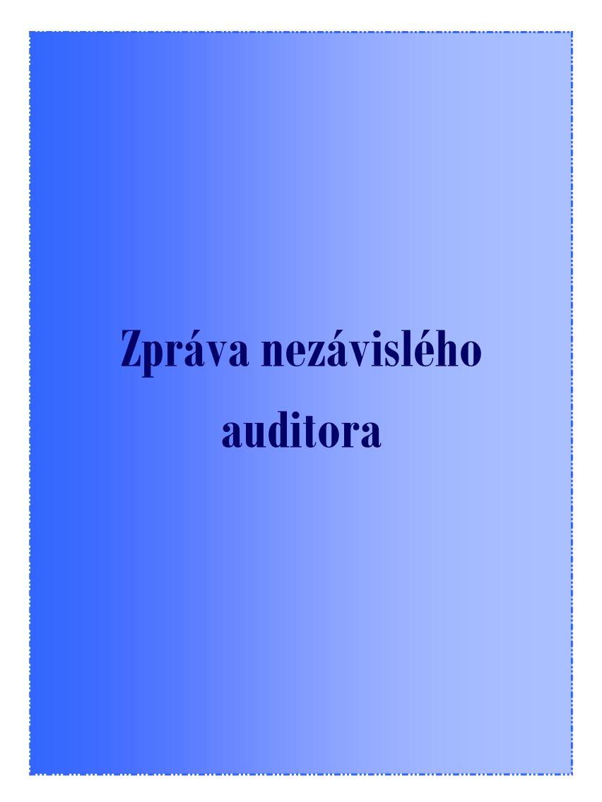 19 Zpráva nezávislého auditora