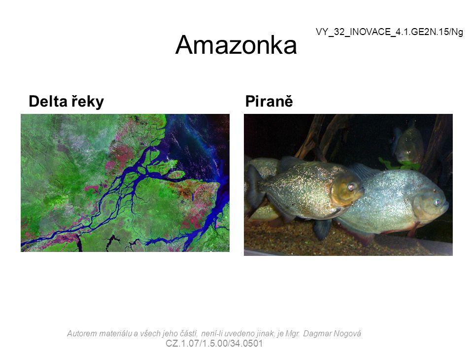 Amazonka Delta řekyPiraně VY_32_INOVACE_4.1.GE2N.15/Ng Autorem materiálu a všech jeho částí, není-li uvedeno jinak, je Mgr.