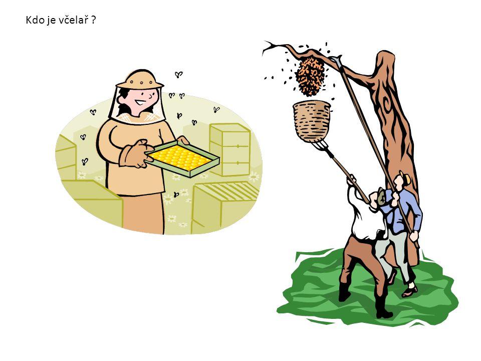 Kdo je včelař ?