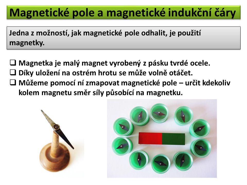 """Magnetické pole můžeme """"zviditelnit také pomocí železných pilin."""