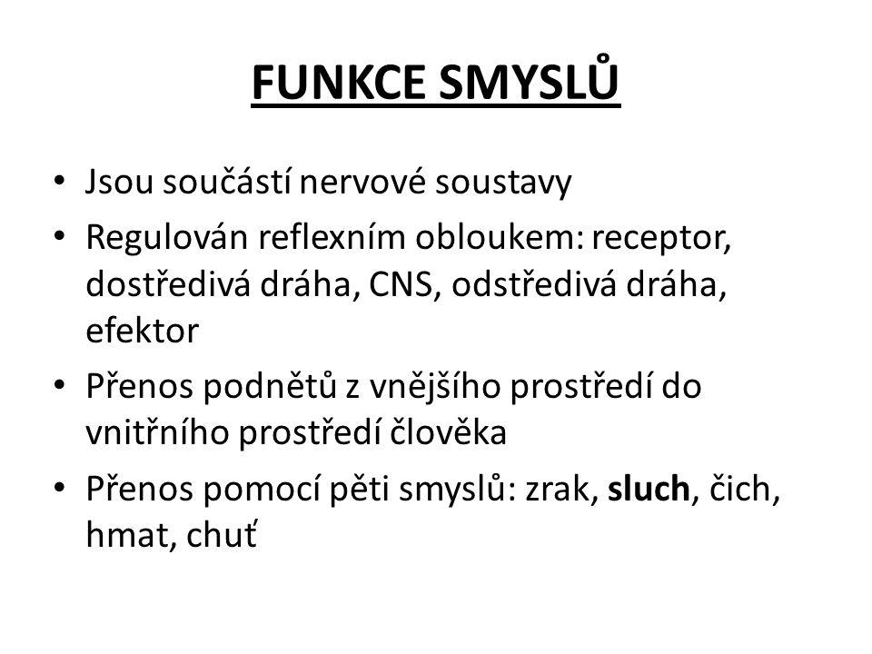 FUNKCE SMYSLŮ Jsou součástí nervové soustavy Regulován reflexním obloukem: receptor, dostředivá dráha, CNS, odstředivá dráha, efektor Přenos podnětů z