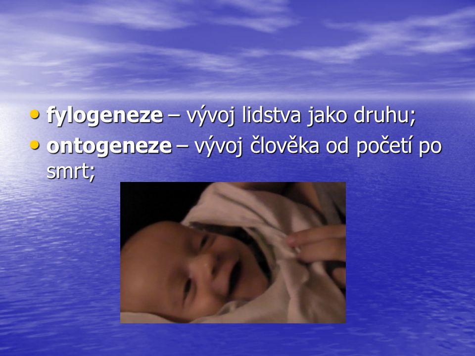 fylogeneze – vývoj lidstva jako druhu; fylogeneze – vývoj lidstva jako druhu; ontogeneze – vývoj člověka od početí po smrt; ontogeneze – vývoj člověka
