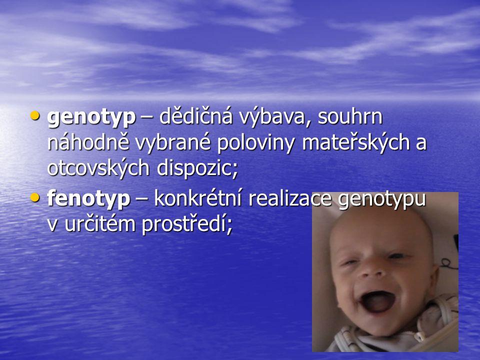 Periodizace lidského věku prenatální období – početí - narození prenatální období – početí - narození kojenecké období – 1.