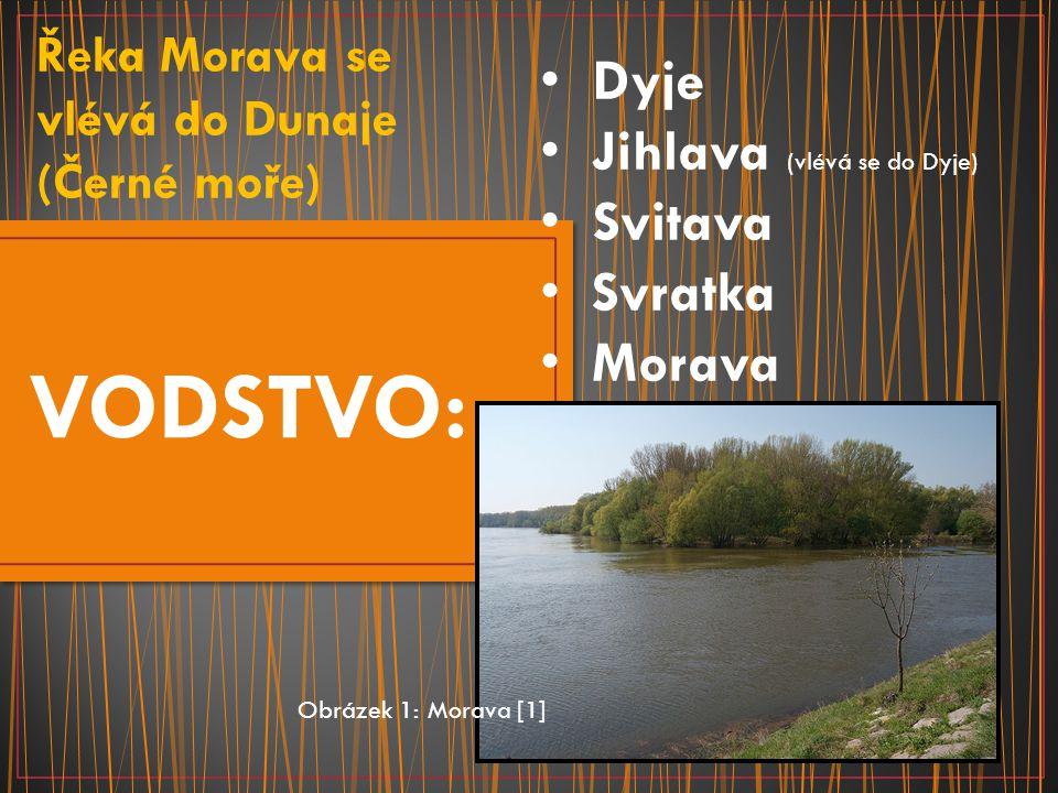SLOVÁCKO Obrázek 17: Soška Věstonické Venuše [17] Slovácko může nabídnout každému něco.