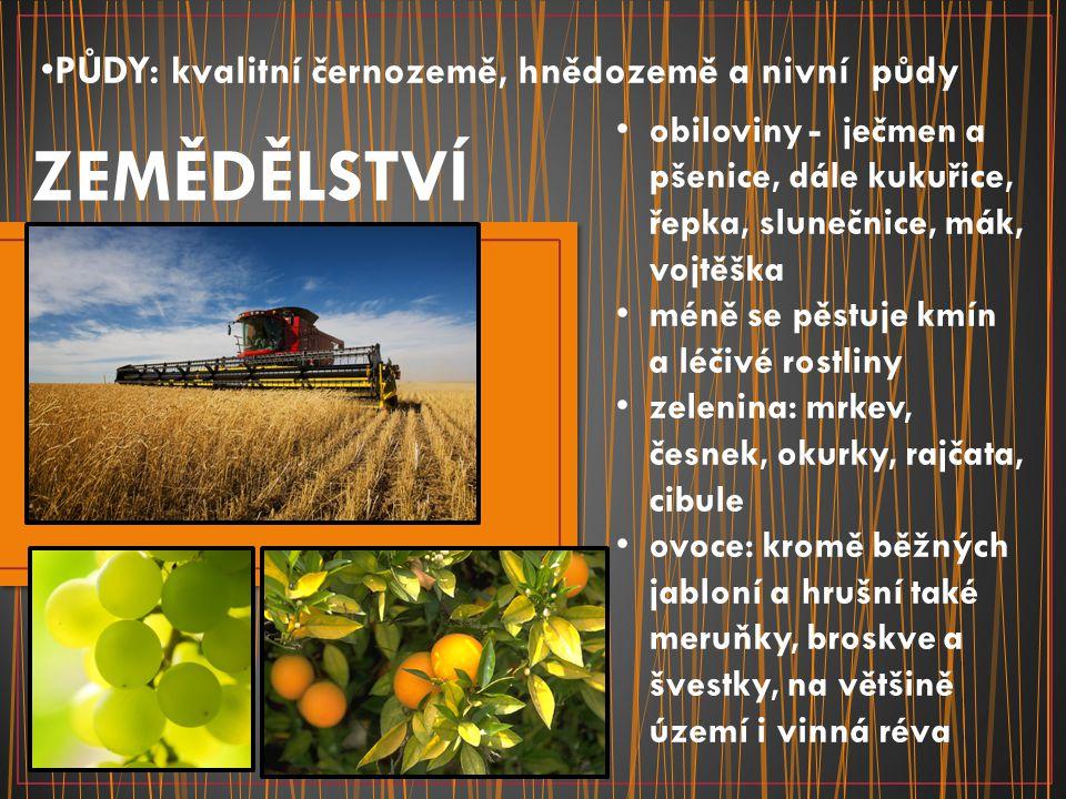PŮDY: kvalitní černozemě, hnědozemě a nivní půdy ZEMĚDĚLSTVÍ obiloviny - ječmen a pšenice, dále kukuřice, řepka, slunečnice, mák, vojtěška méně se pěs