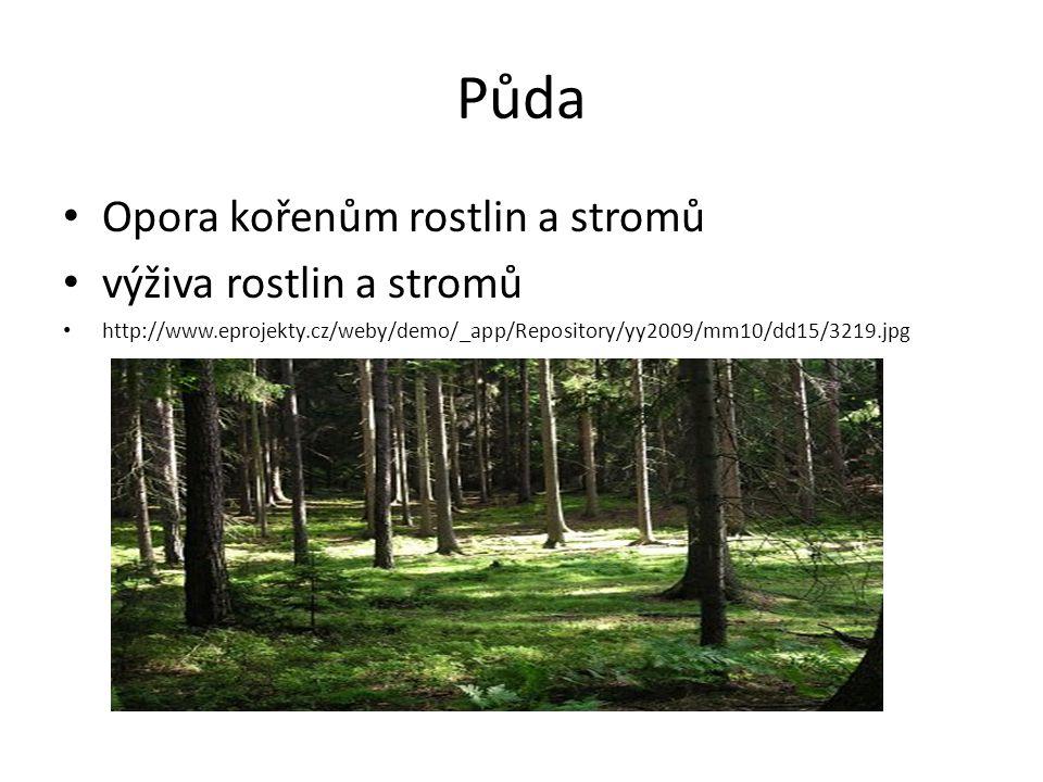 Půda Opora kořenům rostlin a stromů výživa rostlin a stromů http://www.eprojekty.cz/weby/demo/_app/Repository/yy2009/mm10/dd15/3219.jpg