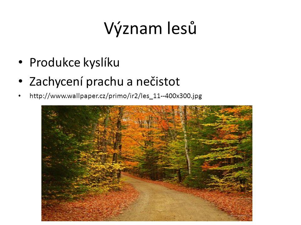 Význam lesů Produkce kyslíku Zachycení prachu a nečistot http://www.wallpaper.cz/primo/ir2/les_11--400x300.jpg