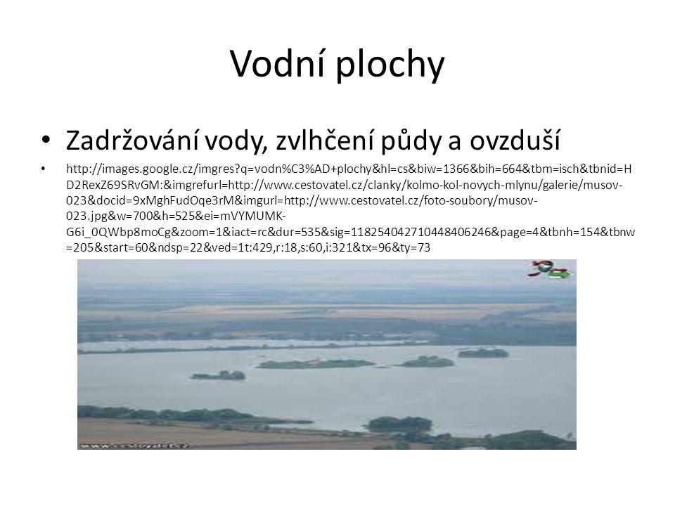 Vodní plochy Zadržování vody, zvlhčení půdy a ovzduší http://images.google.cz/imgres q=vodn%C3%AD+plochy&hl=cs&biw=1366&bih=664&tbm=isch&tbnid=H D2RexZ69SRvGM:&imgrefurl=http://www.cestovatel.cz/clanky/kolmo-kol-novych-mlynu/galerie/musov- 023&docid=9xMghFudOqe3rM&imgurl=http://www.cestovatel.cz/foto-soubory/musov- 023.jpg&w=700&h=525&ei=mVYMUMK- G6i_0QWbp8moCg&zoom=1&iact=rc&dur=535&sig=118254042710448406246&page=4&tbnh=154&tbnw =205&start=60&ndsp=22&ved=1t:429,r:18,s:60,i:321&tx=96&ty=73