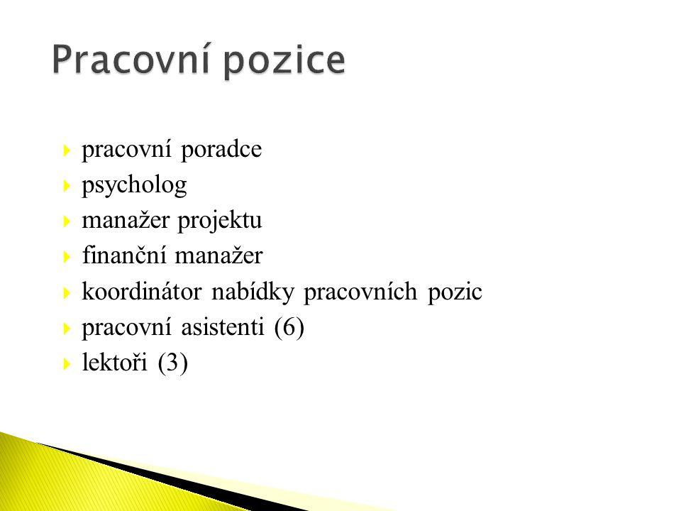  pracovní poradce  psycholog  manažer projektu  finanční manažer  koordinátor nabídky pracovních pozic  pracovní asistenti (6)  lektoři (3)