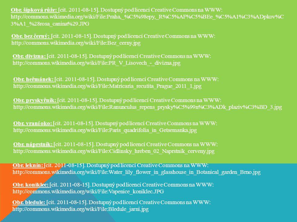 Obr. šípková růže: [cit. 2011-08-15]. Dostupný pod licencí Creative Commons na WWW: http://commons.wikimedia.org/wiki/File:Praha,_%C5%98epy,_R%C5%AF%C