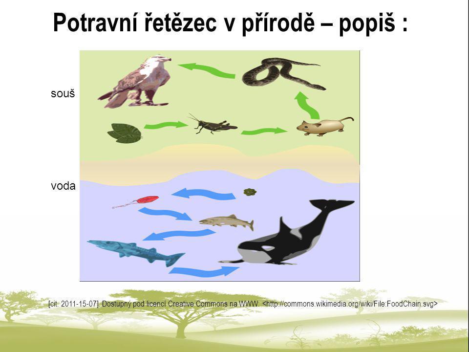 Potravní řetězec v přírodě – popiš : [cit. 2011-15-07]. Dostupný pod licencí Creative Commons na WWW: souš voda
