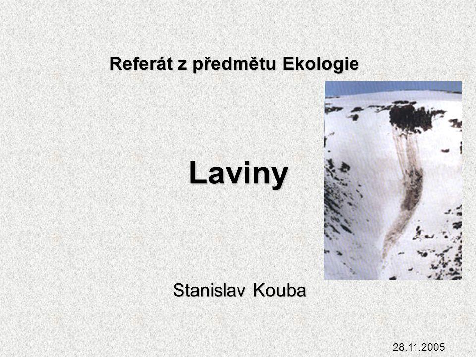 Laviny Stanislav Kouba 28.11.2005 Referát z předmětu Ekologie