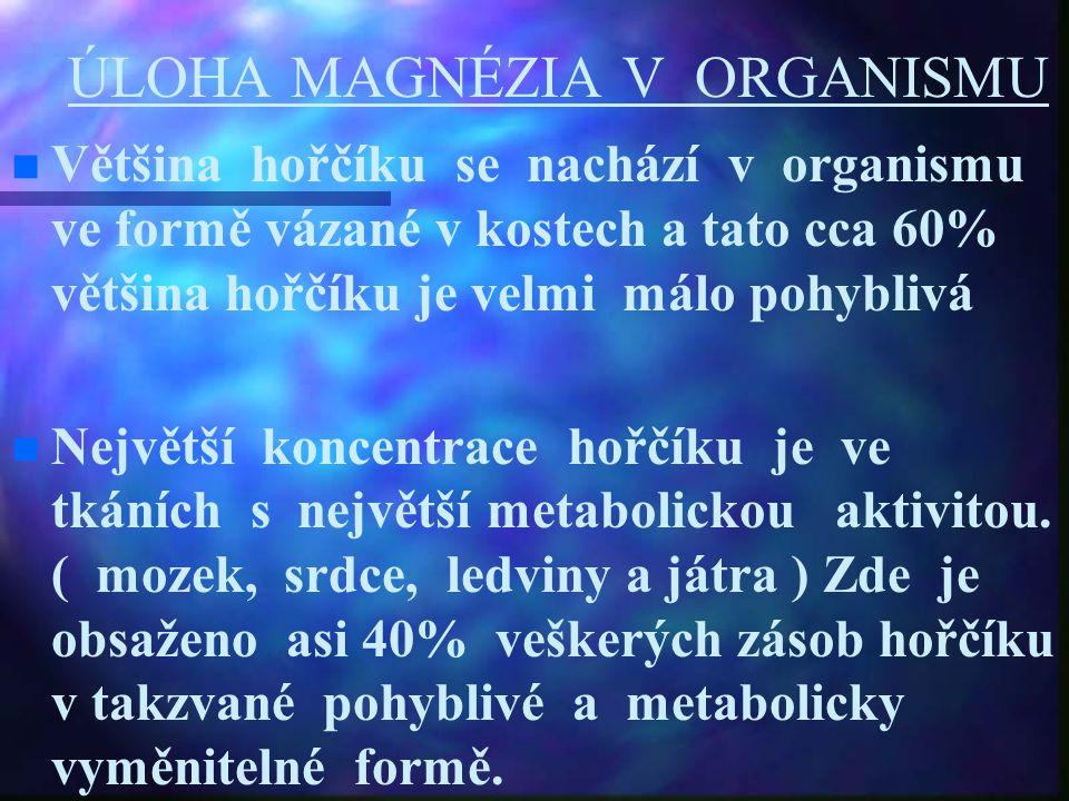 ÚLOHA MAGNÉZIA V ORGANISMU Většina hořčíku se nachází v organismu ve formě vázané v kostech a tato cca 60% většina hořčíku je velmi málo pohyblivá Nej