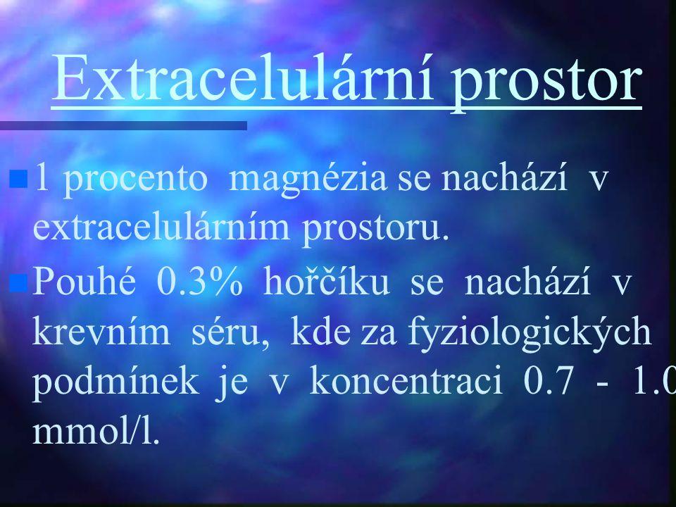 Extracelulární prostor 1 procento magnézia se nachází v extracelulárním prostoru. Pouhé 0.3% hořčíku se nachází v krevním séru, kde za fyziologických